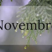 Eventi per bambini novembre