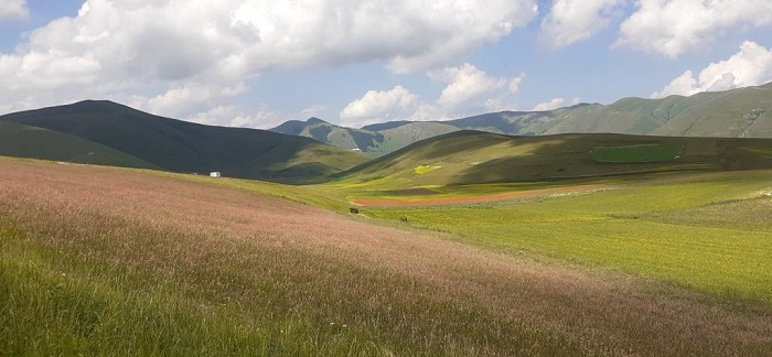 Dove si trova il Parco Nazionale dei Sibillini