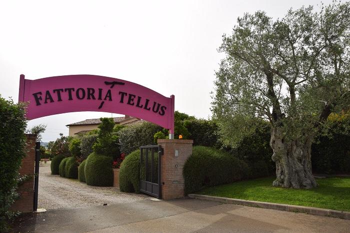 Fattoria Tellus, l'ingresso della fattoria didattica a Montecchio