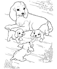 disegno mamma cagna con piccoli cagnolini da colorare ...