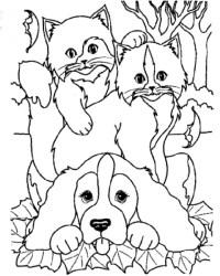 disegno cane da colorare,disegno cagnolino da colorare