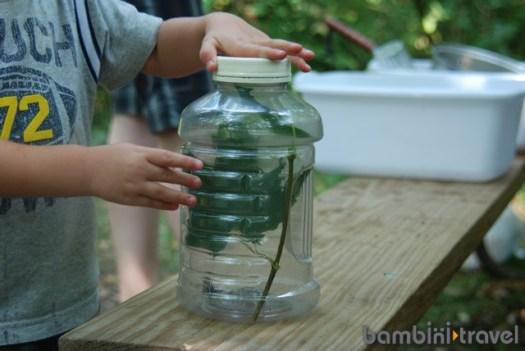 DIY Bug Jar Instructions