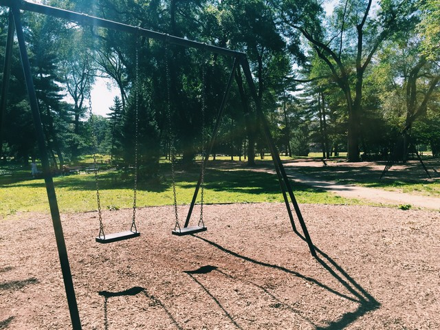 Pinetum Swings Central Park