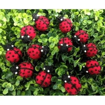 ladybirds felt himalayan journey
