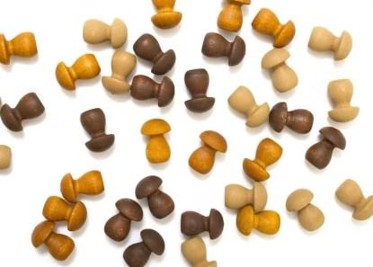 grapat mushrooms mandala