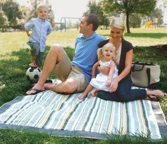 striped picnic blanket by JJ Cole