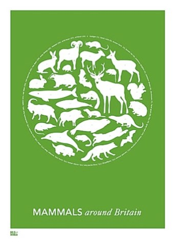 mammals around britain by bold and noble print