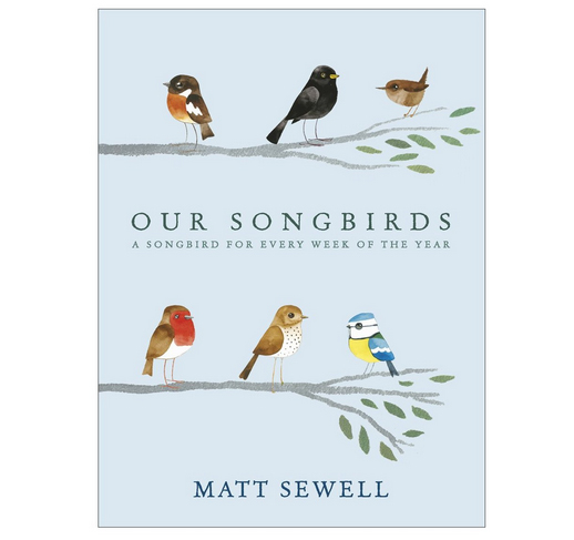 Our-Songbirds-Matt-Sewell