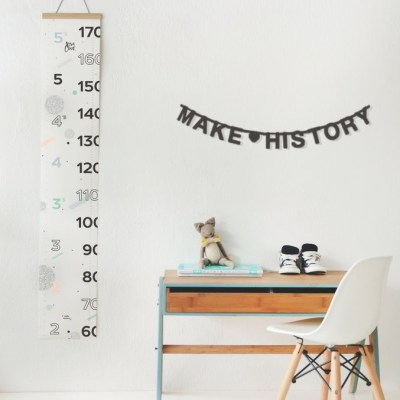 Make History Growth Chart