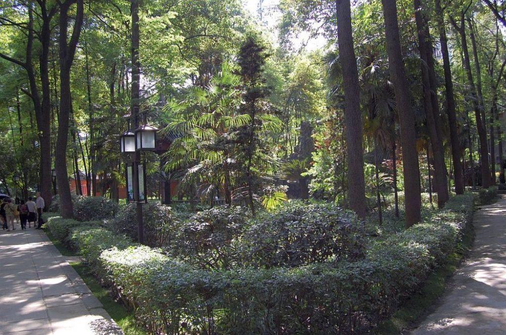 Wenshu Tempel Garten alte Bäume