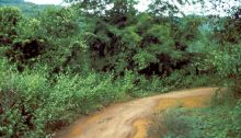 Jinghong Weg
