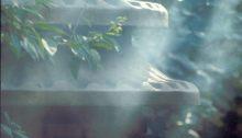 Tempel der Weissen Wolke Baiyun Guan