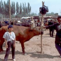 Kashgar 1992
