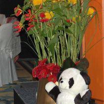 China ohne Pandabär? Das geht gar nicht!