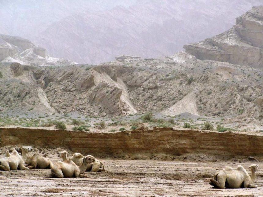 Wüste bei Kucha