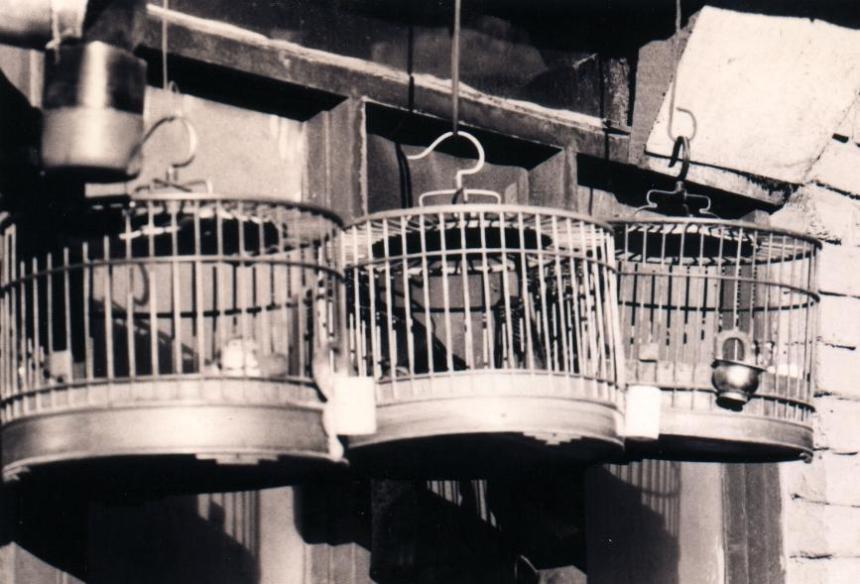Houhai Vogelkäfige