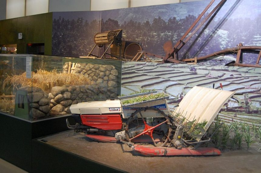 Überseemuseum 4