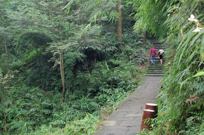 Emeishan - abseits der Touristenpfade in China