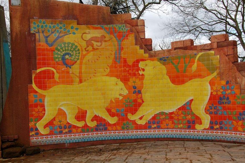 London Zoo indische Löwen