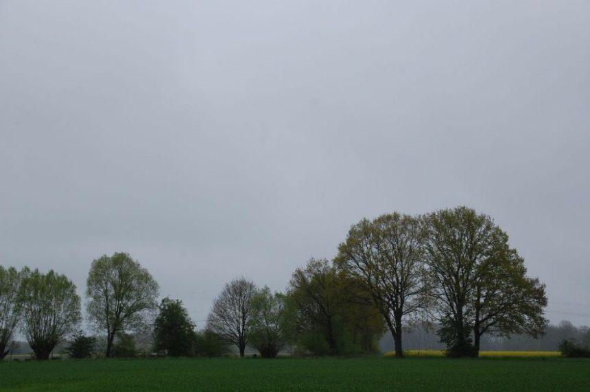 Regen im Wendland