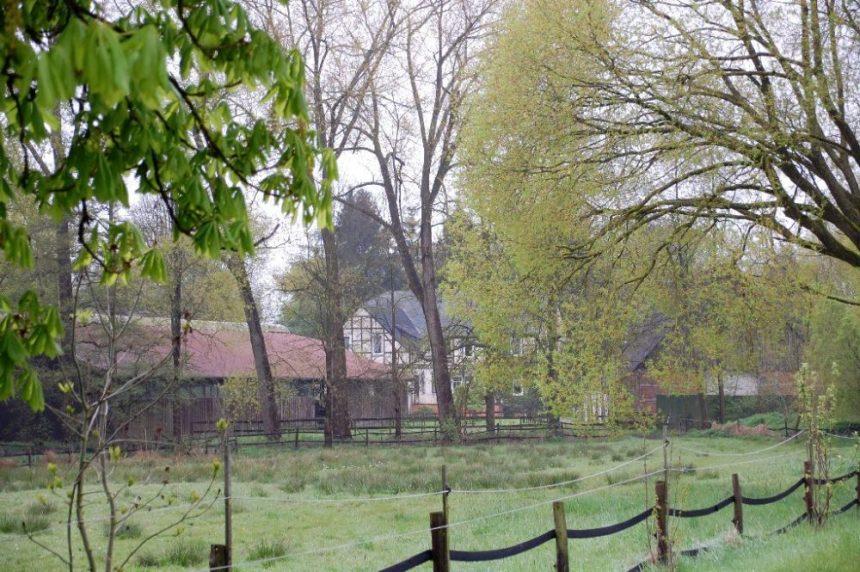 Rundlingsdorf Jabel im Regen