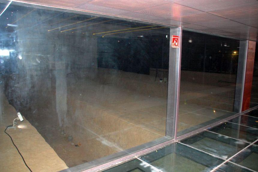 Han Yang Ling unter Glas