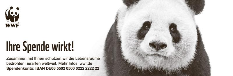 Großer Panda WWF