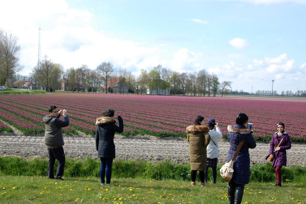 Holland wie aus dem Bilderbuch - Reisebericht Tag 1