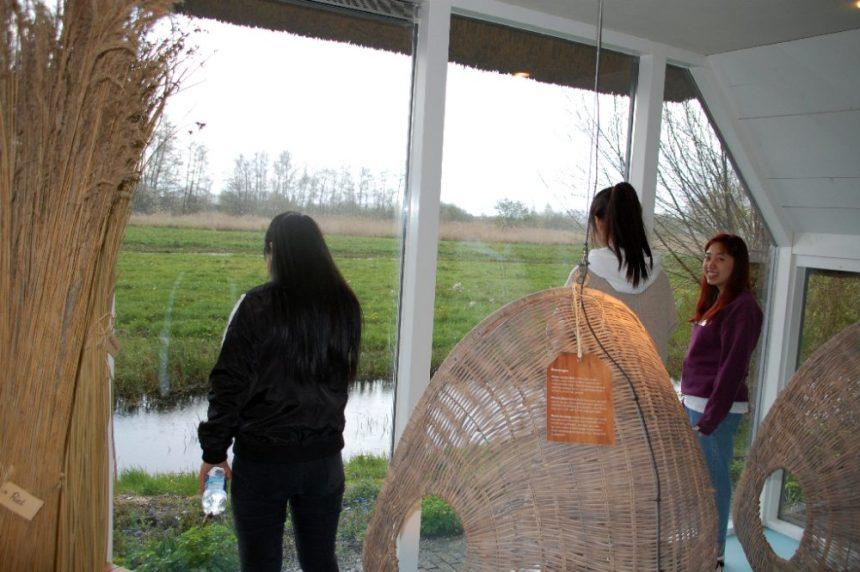 Besucherzentrum de Wieden - es regnet.