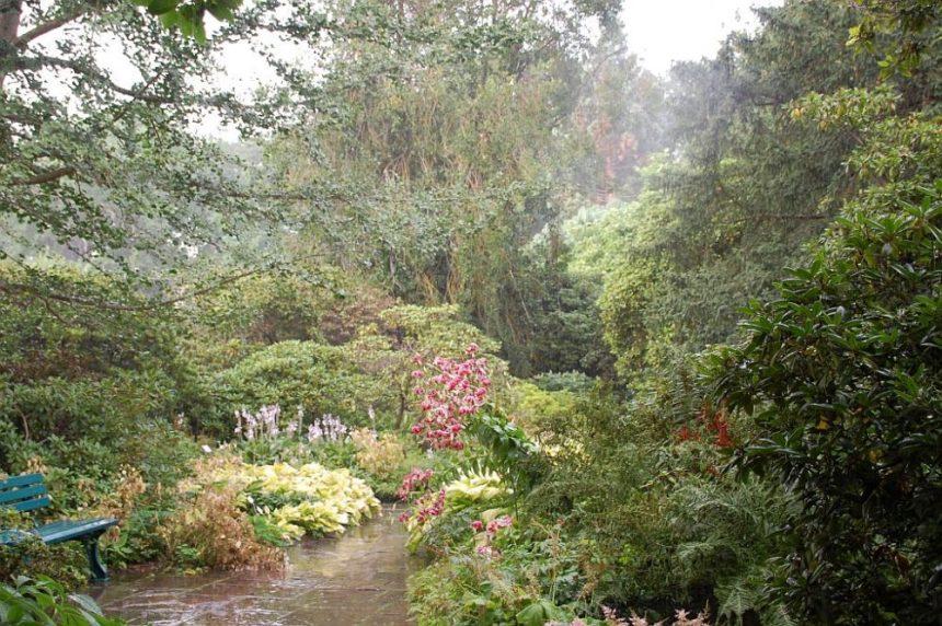 Berggarten im Regen