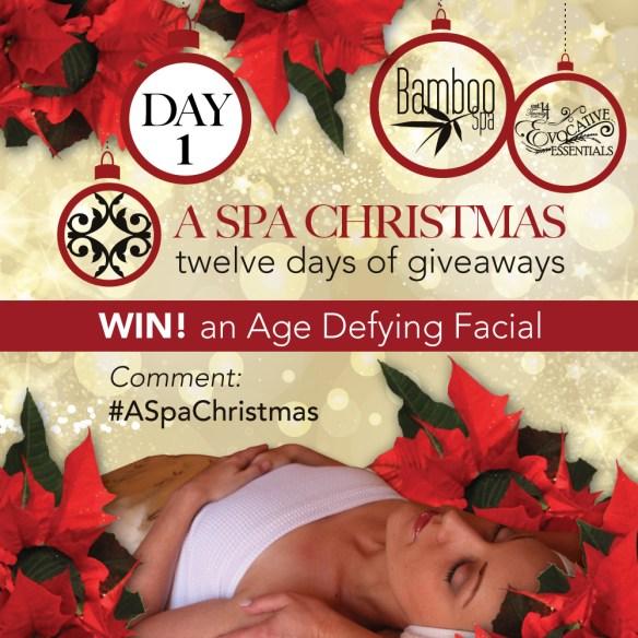 aSpaChristmas-Day-1-Facial