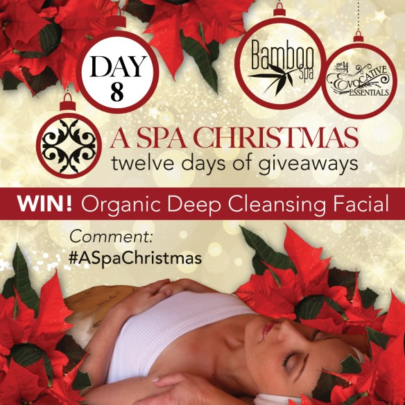 aSpaChristmas-Day-8-Deep-Cleansing-Facial