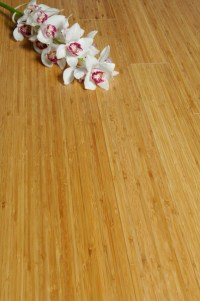 Has carbonised bamboo flooring been stained? | Bamboo Floor