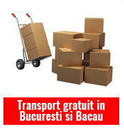 Transport parchet bambus