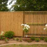 Bambus-Sichtschutz