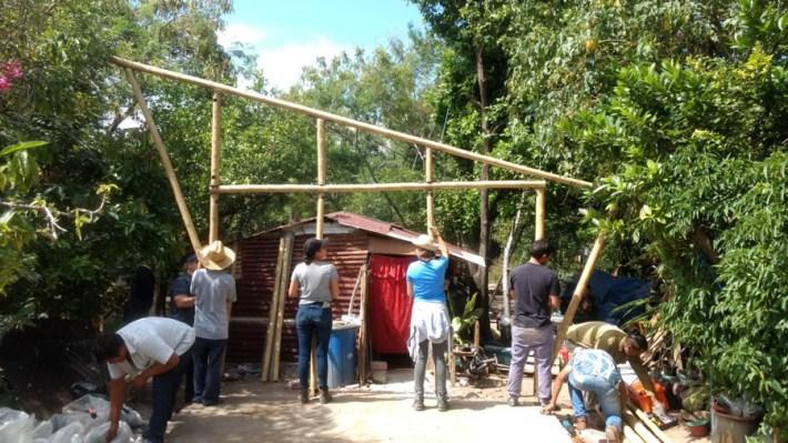 Chietla-Reconstrucción Bambu sismo resistente.jpg