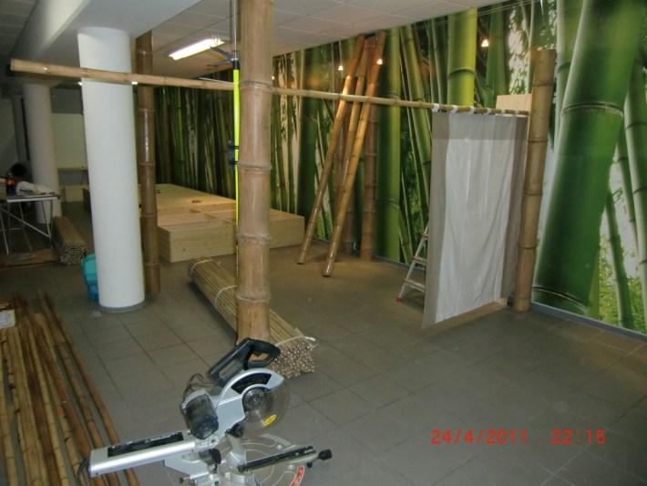 Verabreitung von Bambus - grüne Bambusrohre als Fototapete _ Bambus von CONBAM