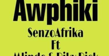 Senzo Afrika – Awuphiki ft. Mlindo & Riky Rick