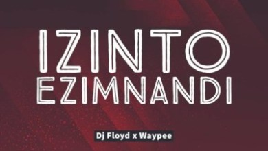 Dj Floyd x WayPee – Izinto Ezimnandi