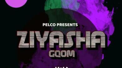 Dj Pelco – Ziyasha Gqom Vol.1