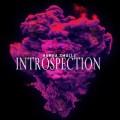 Hamba Smallz – Introspection