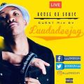 LuuDaDeejay – House Of Sonic Live Session Guest Mix