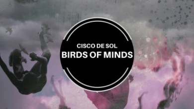 Cisco De Sol – Birds Of Mind (Original Mix)