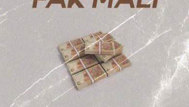 Malicon – Fak' Mali ft. DJ Pelco & King Shesha