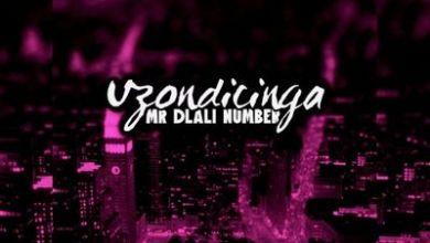 Mr Dlali Number – Uzondicinga