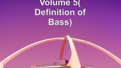 Pro-Tee – Boom-Base Vol 5 (Definition Of Bass) Album