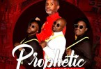 Afrikan Roots & Naked-Wire – Prophetic Rhythm (Album)