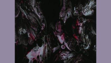 Native Tribe & Da Q-Bic – Symbiote (Original Mix)