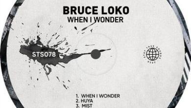 Bruce Loko – Mist (Original Mix)