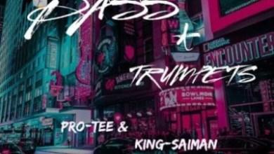 Pro-Tee & King Saiman – Heal My Heart